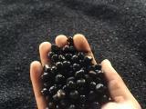 油用牡丹籽