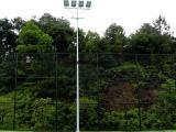 室外体育场照明灯杆 12米两节式足球场灯杆 优格体育场馆照明