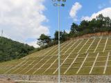 7人制足球场灯杆定制 优格室外灯光足球场建设 体育场照明灯杆