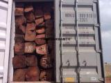 非洲亚花梨刺猬紫檀木材进口代理清关费用|黄埔港进口木材报关行