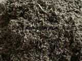 湖北蕲艾草种子艾草艾苗艾根种植批发艾叶质量优发芽率高