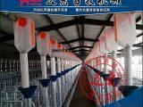 养猪料线 自动饲喂系统 自动供料养猪场专用畜牧机械