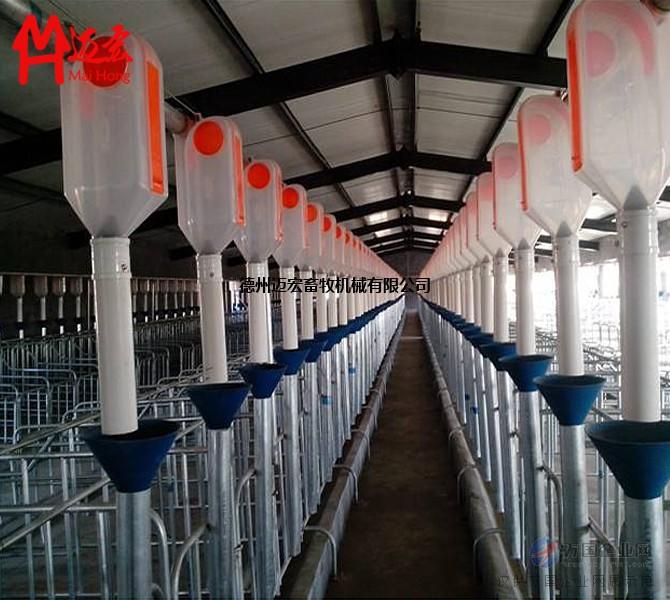猪场自动供料_养猪料线 自动饲喂系统 自动供料养猪场专用畜牧机械