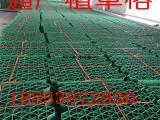 现货供应通广塑料植草格  环保绿色平口植草格