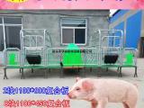 养猪设备亨特主营母猪产床 双体分娩产床 镀锌管焊接