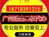 进出口办理流程广州申请进出口办理费用广州进出口申请条件