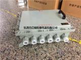 水泥厂防爆接线端子箱