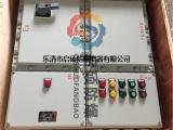 BXD51-12/K63防爆双电源配电箱