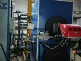 新型冷凝式热水锅炉 厂家直销
