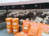 提高采食量的羊饲料添加剂,育肥羊饲料添加剂