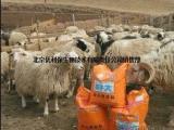 羊饲料预混料 育肥羊催肥饲料