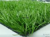 足球场人造草坪批发供应人造草坪批发 厂