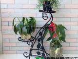 工艺铁丝架    摆设花卉植物装饰移动花盘架_