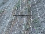 主动防护网生产厂,主动防护网,安平添来(多图)