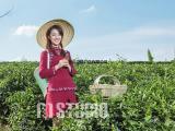 重庆餐饮饭店企业茶山广告宣传片拍摄制作