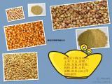 旺川求购:大豆、玉米、高粮、棉粕、大麦、肉骨粉