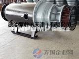 雪橇式潜水轴流泵,铸铁潜水轴流泵,德能泵业轴流泵价格