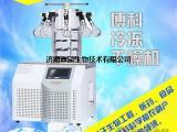 实验室冷冻干燥机BK-FD10S--食品、药品行业必备