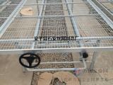 养殖种植多肉植物网片¥培育多肉盆栽网架¥安平厂家供应育苗网床