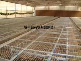 莘县温室大棚育苗床网片¥花卉种植网架价格¥大棚蔬菜种植网片