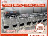 宏基养猪设备定位栏的好处母猪限位栏规格齐全
