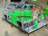 现代化养猪设备2100×3600高培母猪分娩床厂家直销价格低