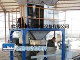 玉米灌包机定量打包秤D-C-S-D60