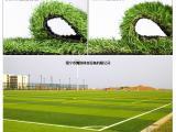 南宁鹰族—人造草坪|人造草皮|人工草坪|仿真草坪|生产厂家