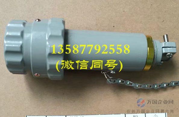 15YT-4J 防爆插头  GTZ-15A 防爆三相四极插头插座 15A 400V