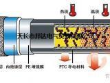30DWK2-PF46低温工业企业管阻燃电伴热带
