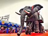 展览展示设备机械大象出租,机械大象租赁电话