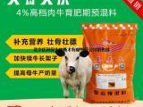 肉牛养殖饲料配方 肉牛养殖常用的饲料有哪些