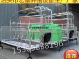 现货供应母猪双体产床猪产床宏基质优价量