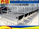 宏基厂家直销高配定位栏母猪限位栏一组十位带食槽