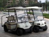 两人座高尔夫球车(LT-A2)