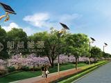 安徽朗越能源一体式太阳能路灯 美观节能