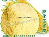 供应膨化玉米粉,玉米粉,饲料