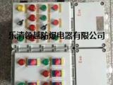防爆洗熨设备控制箱