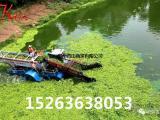 水生植物打捞船、专业水葫芦清理机械