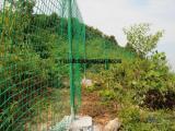 墨绿色浸塑铁丝网 养殖铁丝网 散养鸡荷兰网养殖网