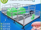 畜牧业指定的母猪产床厂家销售单位双体母猪产床价格