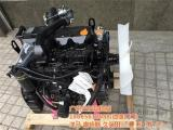 洋马发动机_仨仨玖_4TNV94洋马发动机配件