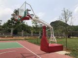 广西南宁钢化玻璃篮球架移动式豪华版篮球架 飞跃体育专营店