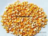 大量采购玉米、小麦、高粱、大豆、大米等酿酒原料