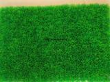 广西南宁足球场人工草坪 休闲草坪批发销售南宁飞跃体育