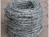 铁蒺藜型铁刺线网圈地防盗防爬专用