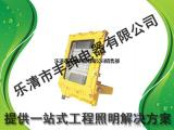 80W/100W一体式led防爆应急灯 HBND-B802
