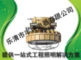 HBND-A805-II 防潮防腐防爆LED节能灯