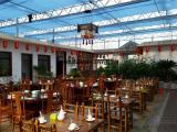 鲁源生态餐厅温室大棚建设厂家