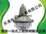 BAD51-E吸顶式增安型防爆灯 吊杆式防爆灯